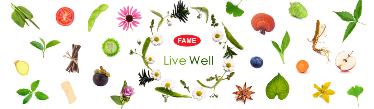 FAME Pharmaceuticals Industry Co ,Ltd