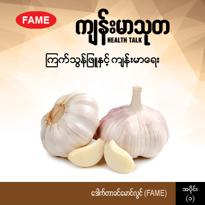 Garlic and health (1)