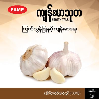 Garlic and health (2)
