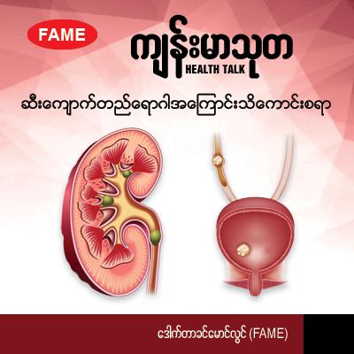 All about renal stones