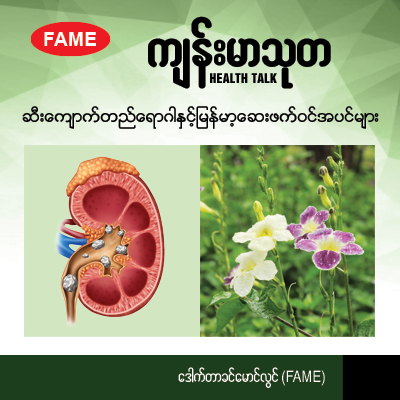Renal stones and Myanmar's medicinal plants