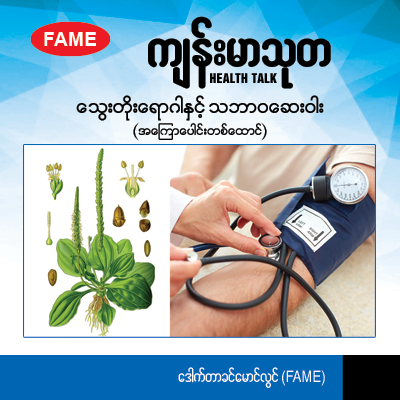 Hypertension and the natural medicine (Plantago major)