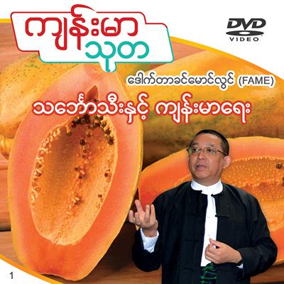 Papaya and its efects on health