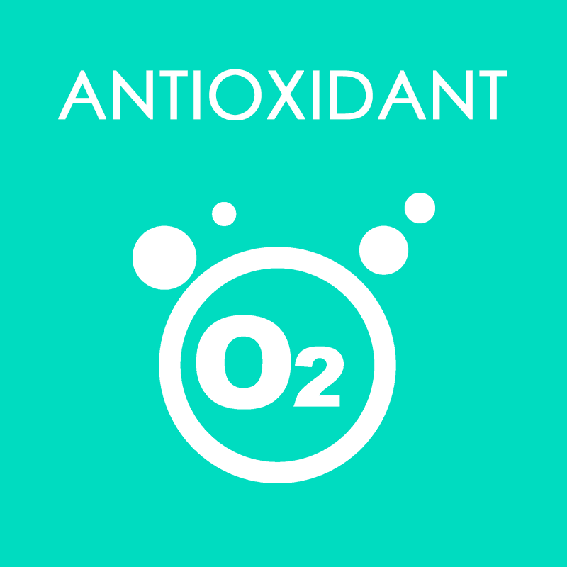 Antioxidant Supplements