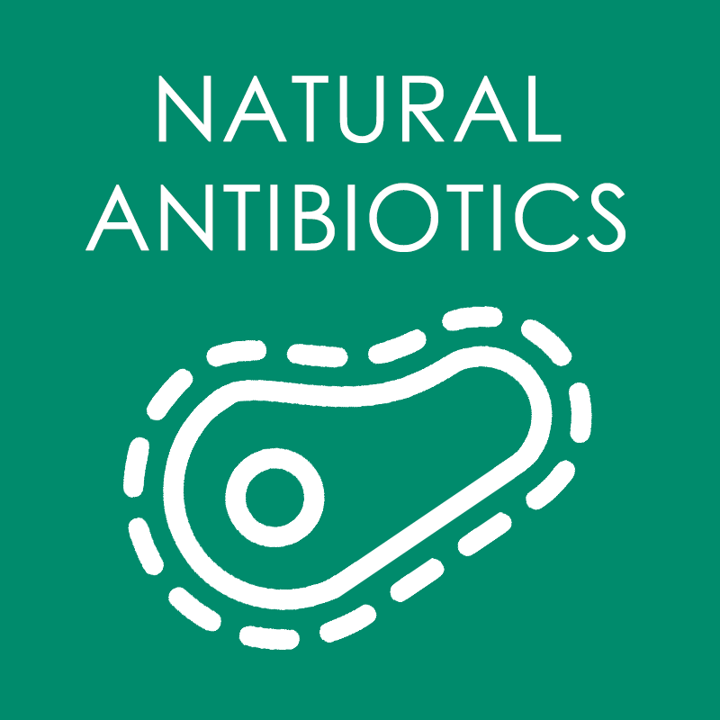 Natural Antibiotics