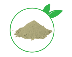 wheatgrass raw powder