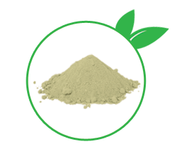Alfalfa Raw Powder
